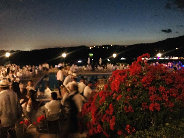 036bce4d4 Panamá Polo Open  semillero de eventos de talla mundial