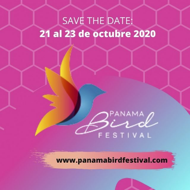 El PANAMA BIRD FESTIVAL 2020